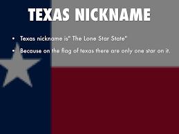 Texas Flag Pledge Texas By Allison Sims