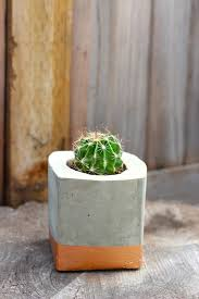 Cactus Planters by Ornamental Stone Provides A Wide Assortment Of Concrete Planters