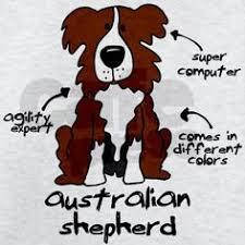 australian shepherd quotes the instagram february dog days photo challenge is here