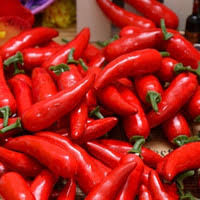 Chili Pepper Christmas Ornaments - wholesale chili pepper decorations buy cheap chili pepper