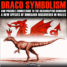 Why Does The Welsh Flag Have A Dragon Draco Symbolism And Possible Connections To The Dracoraptor