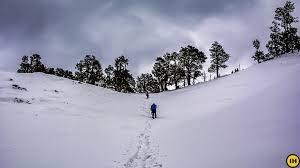 nag tibba trek trek the indian himalayas indiahikes