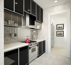 modern wet kitchen design