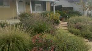 Native Oregon Landscape In High Desert Xeriscape Pinterest