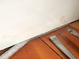 Foam Backed Laminate Flooring Iamtonyang Com