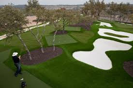 Astro Turf Backyard Dave Pelz Synscapes Austin San Antonio Artificial Turf Golf