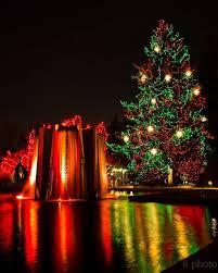 Christmas Lights Colorado Springs 58 Best Denver Images On Pinterest Denver Colorado Mexicans And
