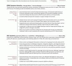 resume objectives for it professionals resume free resume