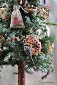 the robin u0027s nest outdoor christmas tree for the birds every