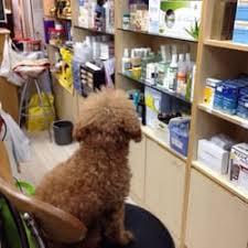 Obat Xyzal p l pharmacy pharmacies 19 tanglin rd tanglin singapore