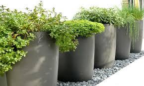 vasi in plastica da esterno vasi e fioriere garden vicenza verde