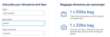 united airlines extra baggage united airlines baggage allowance iflybags offers travellers an