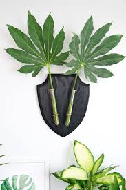 Hanging Wall Planters 387 Best Plants U0026 Planters Images On Pinterest Plants House