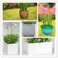 cylinder decorative plant pots for indoor buy decorative