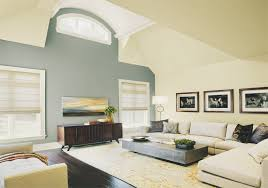 lovely and simple paint color ideas for living room doherty