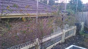 tips for winter garden maintenance home grown wayhome grown way