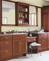 Home Depot Martha Stewart Kitchen Cabinets by Convenience Boutique Slide Out Bathroom Floor Cabinet With