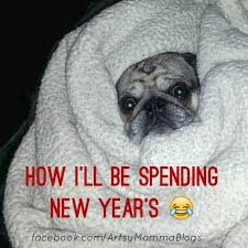 Funny Pug Memes - neay year s meme funny pug meme artsymommadotcom funny memes