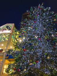 accessories tree lights lights etc