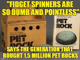 Pet Rock Meme - has anyone found bad luck brian s pet rock the one that ran away