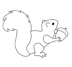 squirrel coloring coloringcrew