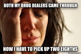Funny Stoner Memes - i m just worried about hurting one of their feelings funny