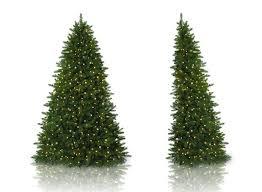 beautiful flat back tree ideas