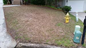 lawn service knoxville outdoor designs outdoor designs