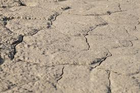 Floor Dry by Free Images Sand Rock Ground Floor Asphalt Dry Soil