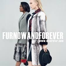 amazing facts about fur dressing for the arctic