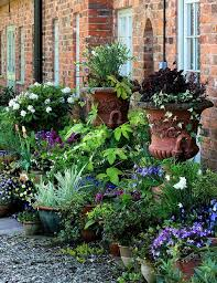 Indoor Garden Containers - 547 best container gardens images on pinterest plants flowers