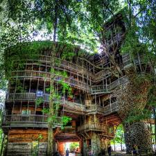 crossville tn world s largest treehouse at crossville tennessee stands