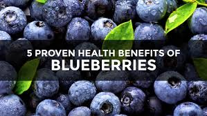 if blueberries were pharmaceuticals they would be hailed as the
