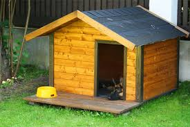 build and paint a doghouse true value projects