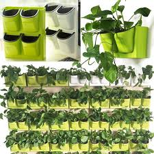 plant wall herb pots and balcony garden on pinterest