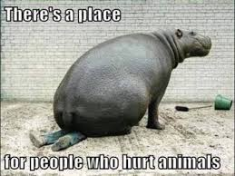 Memes Animals - theres a place for people who hurt animals meme