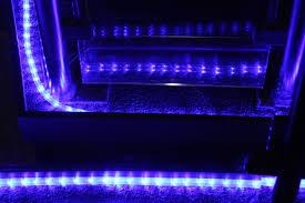 chambre aquarium images gratuites espace bleu éclairage boîte de nuit lumière