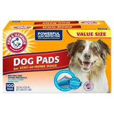 clean up odor supplies pets target