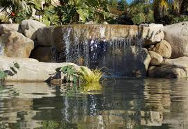 landscape ideas planting for landscaping designs raised flower bed
