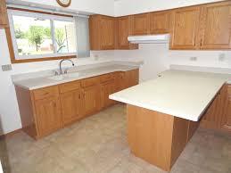 Kitchen Cabinets Ny Best Of Kitchen Cabinets Buffalo Ny Pleasing Renate
