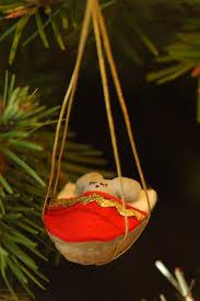 mouse in walnut shell photo bill mondjack photos at pbase