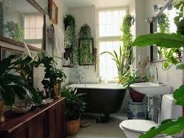 indoor plant display 99 great ideas to display houseplants indoor plants decoration
