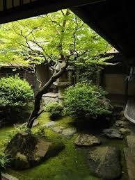 25 serene indoor zen garden for meditation indoor zen garden