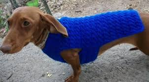 crochet sweater patterns you your pup will