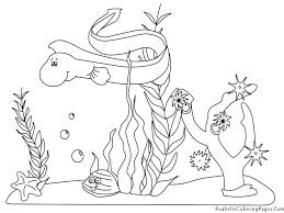 inspiring ocean animals coloring pages book de 4298 unknown