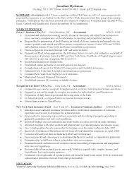 Resume Skills Summary Sample Accounting Resume Experience Free Resume Example And Writing