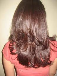 long hair in front shoulder length in back shoulder length hair with layers back view the big river