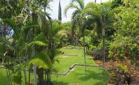 Kona Botanical Gardens Kona Botanical Gardens Dunneiv Org