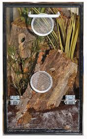 terrario tarantula escamas plumas y piel pinterest