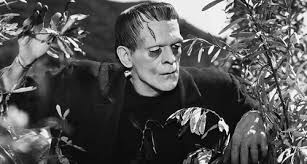 Young Frankenstein Blind Man Victor Frankenstein Character Analysis Frankenstein Novel The